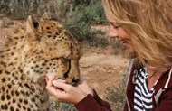 Cheetah and Wildlife Rehabilitation