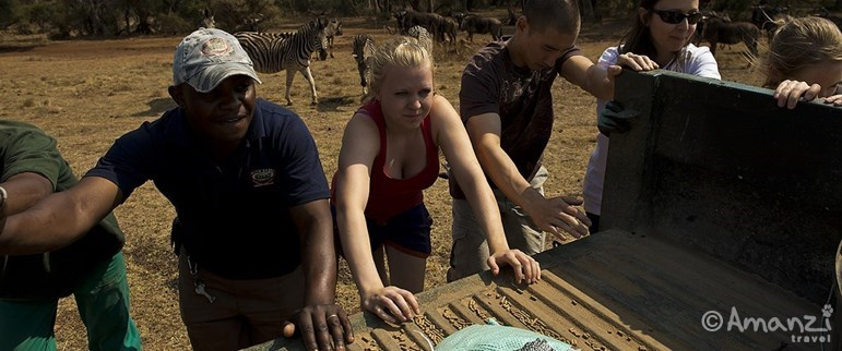 North West Province, South Africa, Volunteer Living with Big Cats
