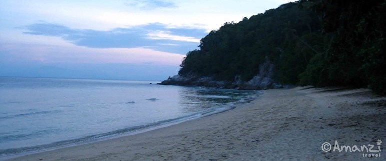 Taman Negara and Perhentian Islands, West Malaysia, Malaysia Tiger and Turtle Experience