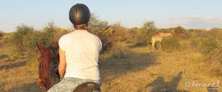 Near Windhoek, Namibia, Naankuse Wildlife Sanctuary Equine Experience
