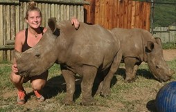 New Volunteer Opportunity – Helping to Care for Orphaned Rhinos