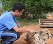 cheetah conservation, Windhoek, Namibia, Namibia Wildlife Sanctuary