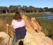 Ruthie, Gweru, Zimbabwe, Lion Breeding and Release Volunteer
