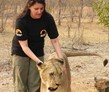 Livingstone, Zambia, Zambia Lion Conservation Volunteer