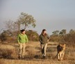 Livingstone, Zambia, Zambia Lion Conservation and Community