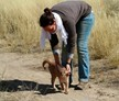 Gobabis, Namibia, Noahs Ark Wildlife Sanctuary - Luxury Project