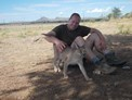 wildlife volunteer caracal, Namib Desert, Namibia, Big Cat Release and Tracking Volunteer
