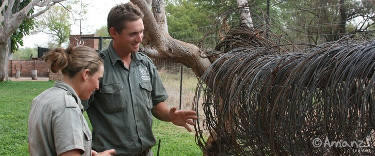 Hoedspruit, South Africa, Askari Wildlife Conservation Volunteer