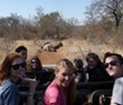 Limpopo Province, South Africa, Wildlife Volunteer Makalali Game Reserve