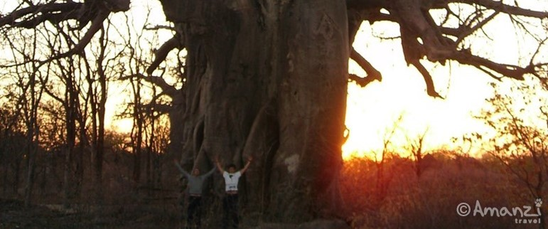 Victoria Falls to Johannesburg, Southern Adventure - 12 Days