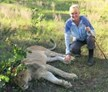 volunteer with lions, Livingstone, Zambia, Zambia Lion Conservation and Community